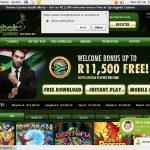 SpringBok Casino 50 Free Spins