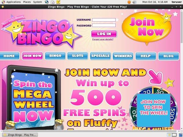 Zingo Bingo Access